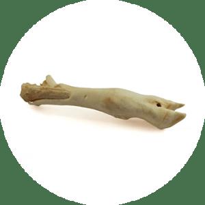 Lammfüße – Kauartikel